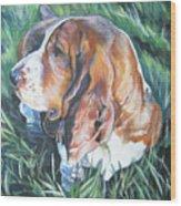 Bassett Hound 1 Wood Print