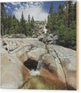 Bassi Falls...nature Nurtures Wood Print