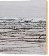 Bastendorff Beach Wood Print