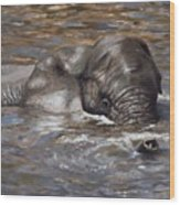 Bath Time - African Elephant In The Water Wood Print