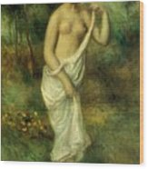 Bather 1887 1 Wood Print