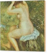 Bather Is Styling 1890 Wood Print