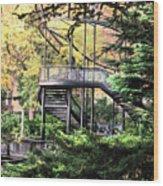 Battery Park Fall Colors  Wood Print