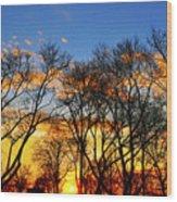 Battery Park Sunset Wood Print