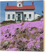 Battery Point Lighthouse In Crescent City Wood Print