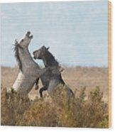 Battle In The Bush Wood Print