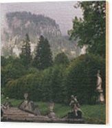 Bavaria Beauty Wood Print