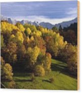 Bavarian Alps 2 Wood Print