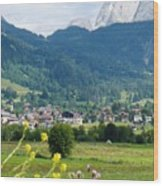Bavarian Alps With Village And Flowers Wood Print