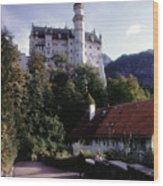 Bavarian Castle Wood Print