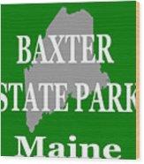 Baxter State Park Pride Wood Print