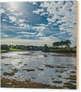 Bay At Low Tide In Clonakilty In Ireland Wood Print