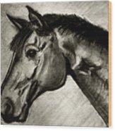 My Friend The Bay Horse Wood Print