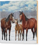 Bay Horses In Winter Pasture Wood Print