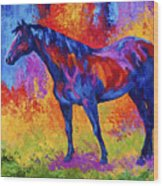 Bay Mare II Wood Print by Marion Rose