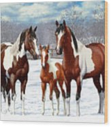 Bay Paint Horses In Winter Wood Print