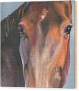 Thoroughbred Royalty Wood Print