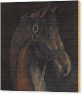 Bay Thoroughbred Wood Print