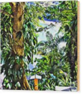 Bay View Tobago Wood Print