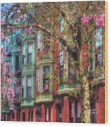 Bay Village Row Houses - Boston Wood Print