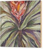 Bayonet Cactus Wood Print
