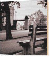 Bayonne New Jersey Wood Print