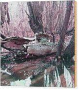 Cypress At Rest Wood Print