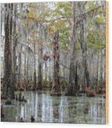 Bayou Magic Wood Print