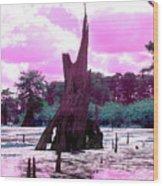 Bayou Pink Wood Print