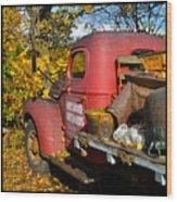 Bayshore Orchards Wood Print