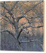 Bb's Tree 2 Wood Print