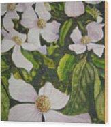 Bc Dogwoods Wood Print