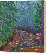 Bcsp 9-20 Wood Print by Stan Hamilton