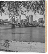 Beach An Cincinnati Skyline  Wood Print