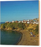 Beach - Ancud Chiloe Wood Print