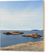 Beach And Rocky Shoreline Wood Print