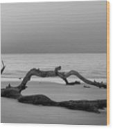 Beach Art Cropped In Black An White Wood Print
