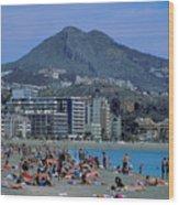 Beach At Barcelona In Spain Wood Print