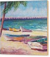 Beach At Progreso Wood Print