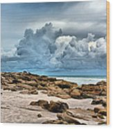 Beach At Washington Oaks Wood Print