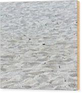 Beach Ball Wood Print