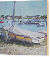 Beach Boat Under Cover Wood Print