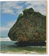 Beach Boulder Wood Print