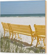Beach Chairs By Darrell Hutto Wood Print