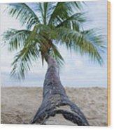 Beach Coco Wood Print