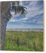 Beach Days Wood Print