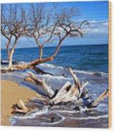 Beach Driftwood Fine Art Photography Wood Print