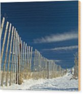 Beach Fence And Snow Wood Print