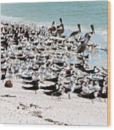 Beach Flock Wood Print
