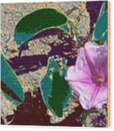 Beach Flower Wood Print